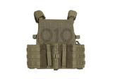 """Plate Carrier """"DCS 5.56 Config"""" Ranger Green (Warrior)_"""